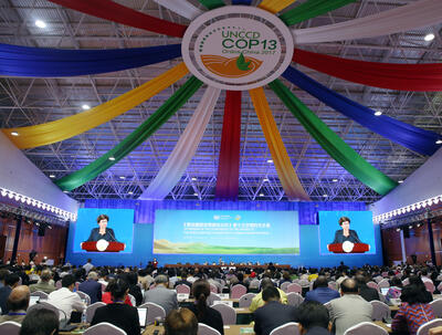 Opening of 13th session of UNCCD Conference of the Parties (photo by IISD/Francis Dejon)