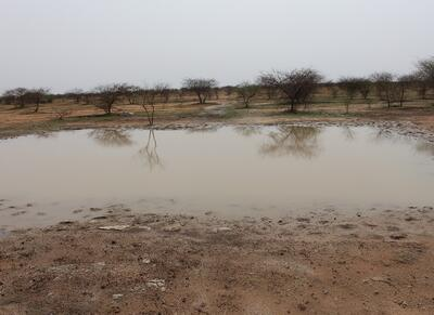Rainwater harvesting pond in Dori, Burkina Faso