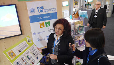 unccd at climate change conference