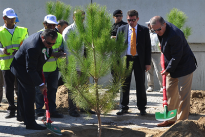 tree_planting_turkey