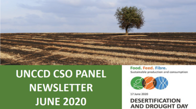 CSO June newsletter cover