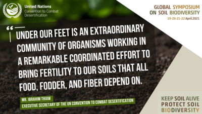 soil biodiversity quote
